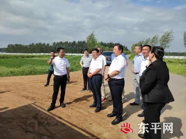 市领导来东平县调研东平湖公铁水联运工程项目